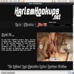 Harlem Hookups Image