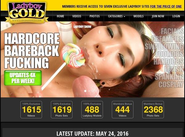 Password Ladyboy Gold Free