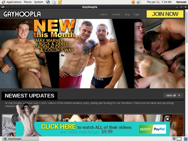 Free Gayhoopla Account Passwords